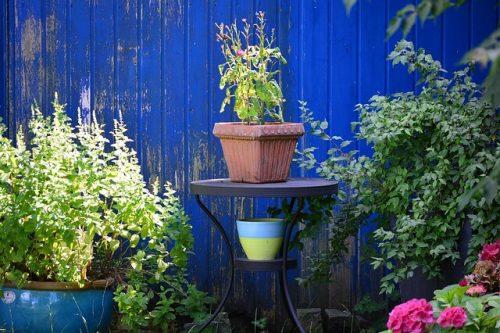 Comment choisir la peinture pour abri de jardin bois ?